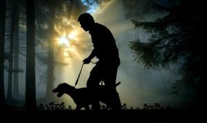 https://pixabay.com/en/walk-man-dog-hunting-dog-animal-2670512/